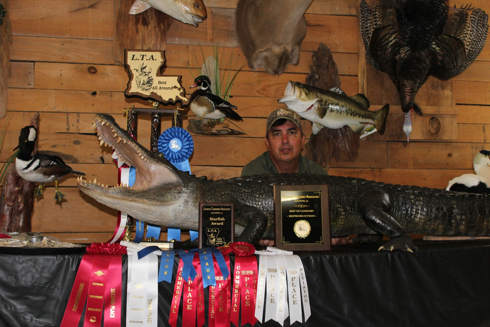 Award Winning Taxidermy - Louisiana