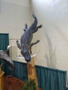 Alligator on a Log Taxidermy