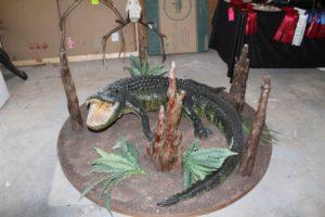 Alligator Taxidermy Display